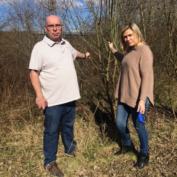 Residents '˜horrified' at trees being axed on green space in