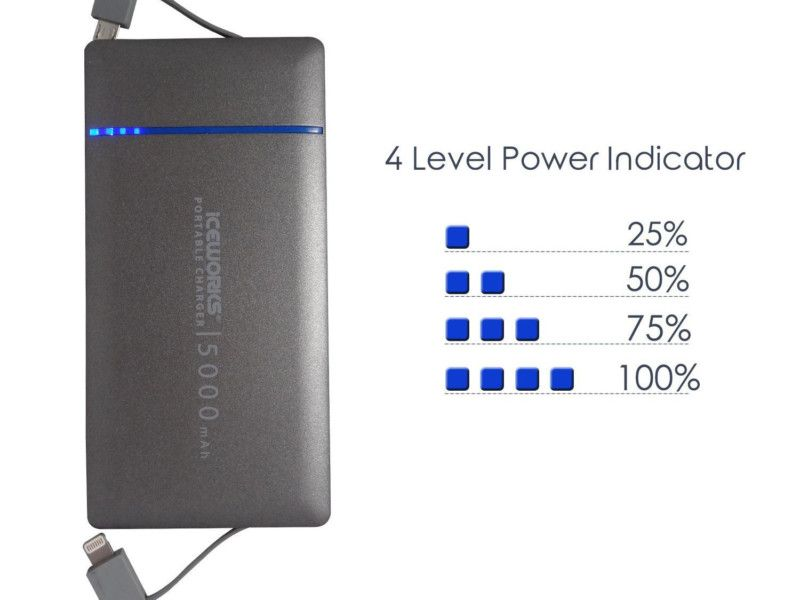Iceworks 5000mAh Portable Charger