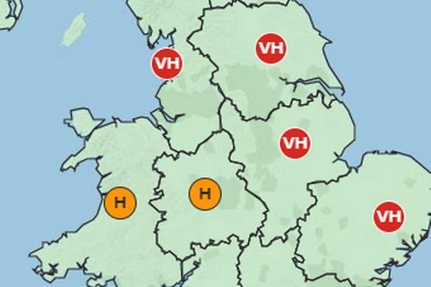 Pollen levels are expected to be very high this weekend. Picture: Met Office