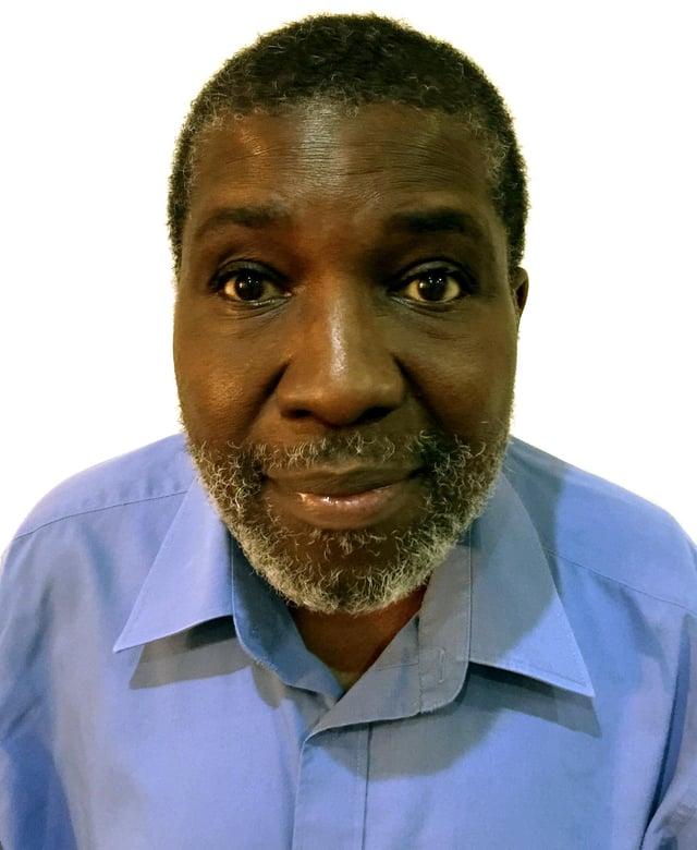 Professor Ade Adebajo