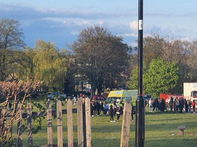 A teenage girl was assaulted in Ecclesfield Park, Sheffield, on Saturday (Photo: Sheffield Now)