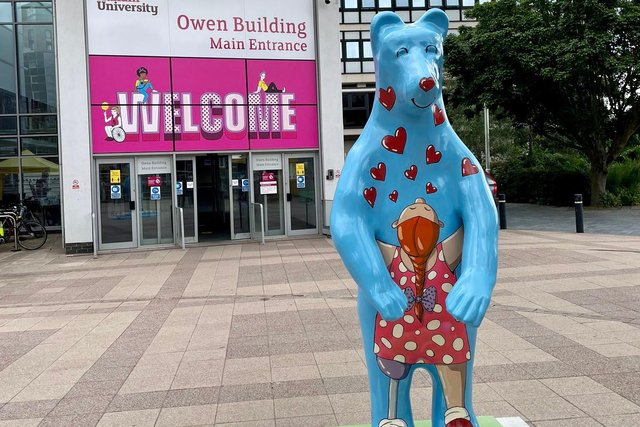 'Thank You Sheffield Children's Hospital bear' created by iconic Sheffield artist Pete Mckee.