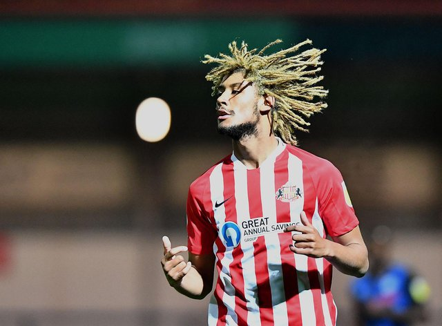 Dion Sanderson spent last season with Sunderland:  FRANK REID