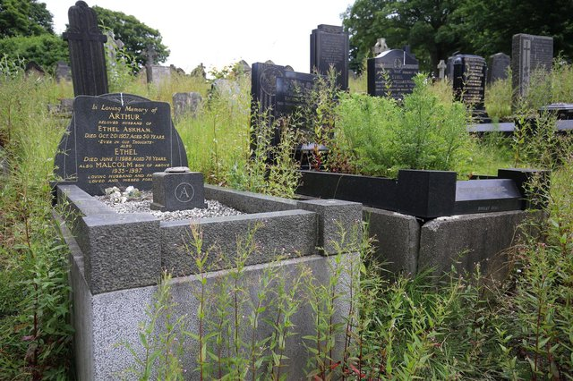 The graves at the cemetery are covered in long grass and weeds. Picture by Chris Etchells