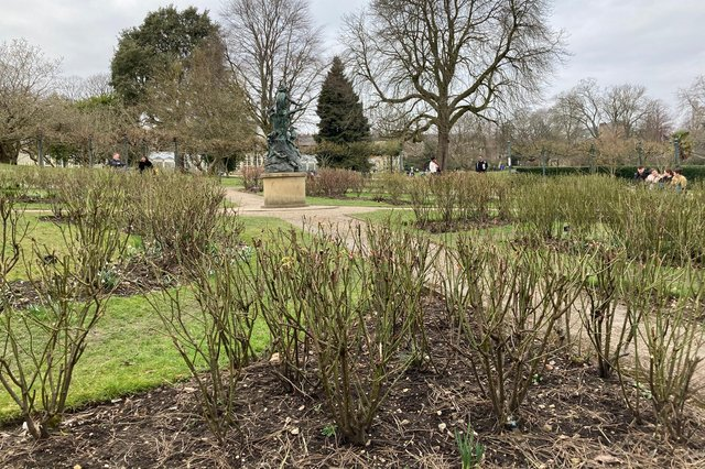 Sheffield Botanical gardens sent in by Ellen Beardmore