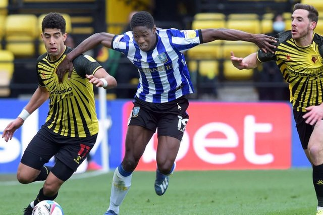 Sheffield Wednesday defender Osaze Urhoghide.