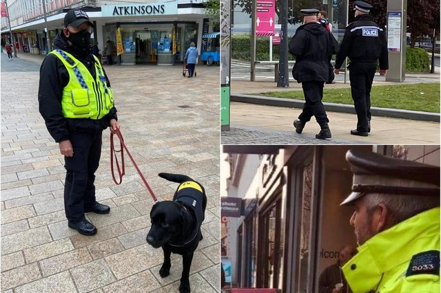 A police drugs dog was used in an operation in Sheffield city centre