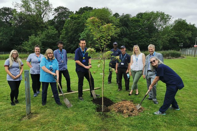 15 trees including crab apple, rowan, and cherry were planted at Woodland View, a nursing home run by Sheffield Health and Social Care NHS Foundation Trust.