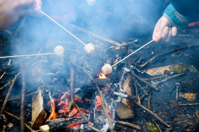 Bushcraft is a survival activity that you can learn at the centre.