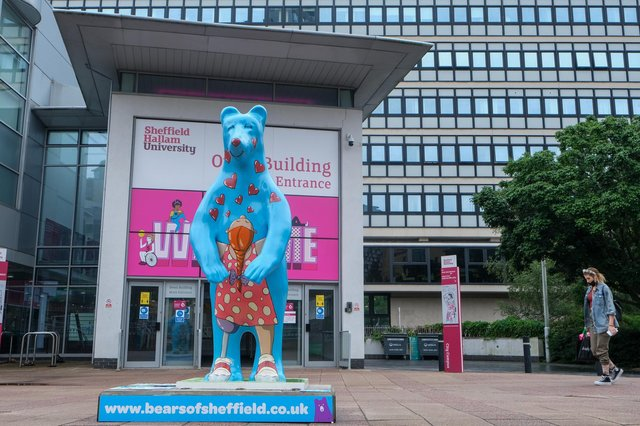 The bears of Sheffield have appeared around the city, raising money for the Children's Hospital Charity