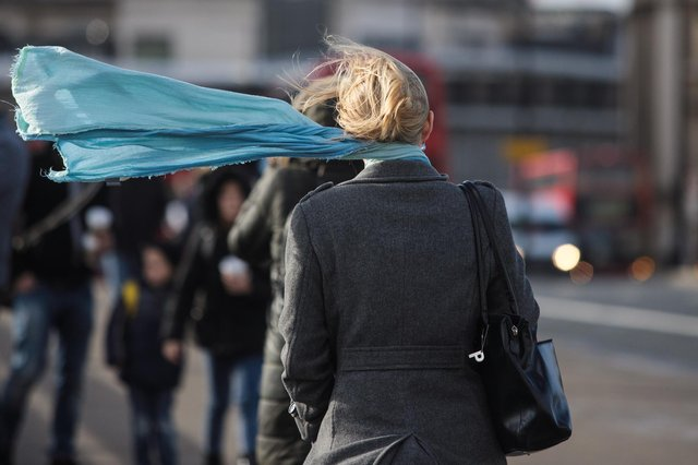 A commuter's scarf blows in the wind (Photo by Jack Taylor/Getty Images)