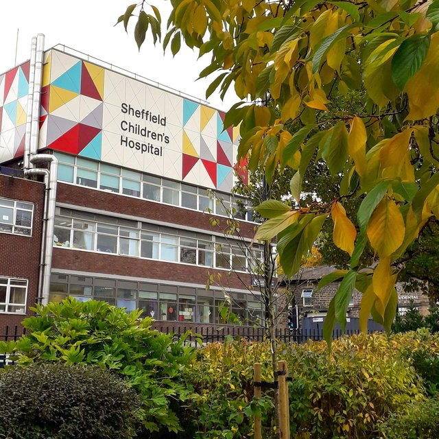 Sheffield Children's NHS Foundation Trust is considering closing a speech and language service to adults following an increase in demand.