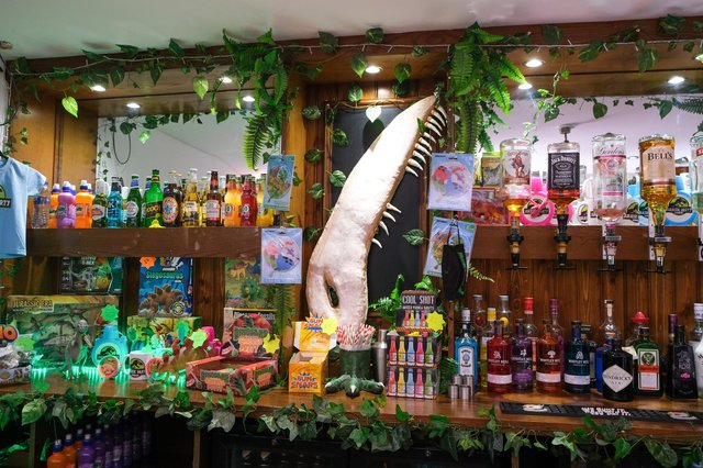 Chantelle Syner prepares to open Jurassica at the former Fighting Cocks pub on Monteney Crescent in Shefffield