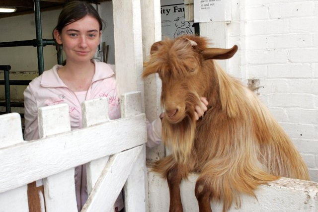 Kelling Manon with goat Elvis, one of Heeley City Farm's favourite animals, in September 2006