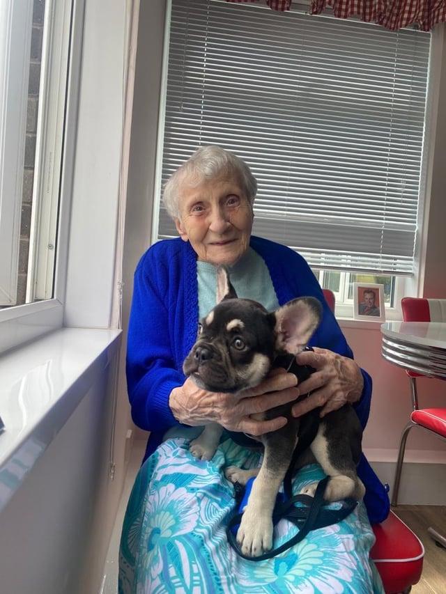 Freda Hancock with the French bulldog