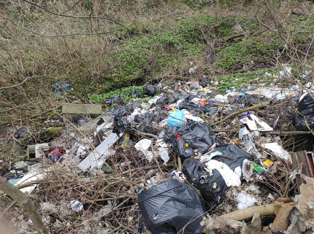 Fly-tipping in Gleadless Valley.