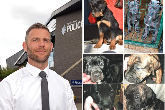 DCI Jamie Henderson, of South Yorkshire Police, has issued a warning after a number of dog thefts