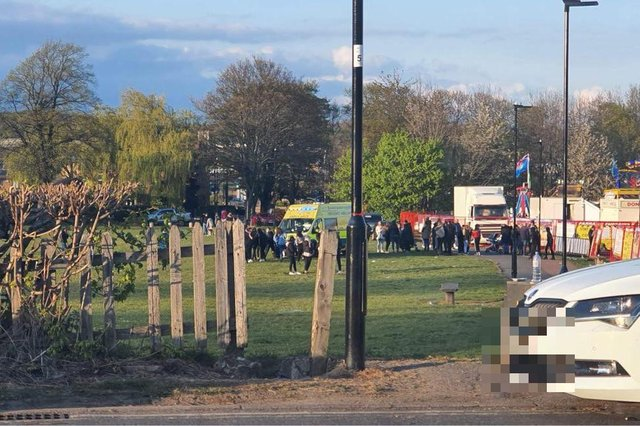 Fight at Sheffield Park - Credit: Sheffield Now