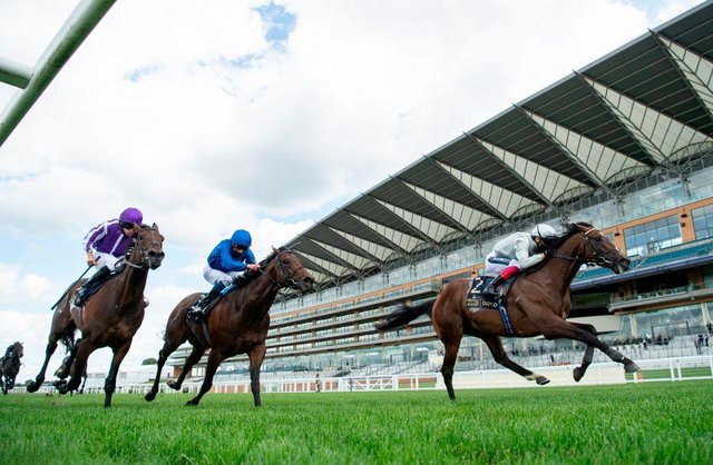 Palace Pier, right, with Frankie Dettori aboard, wins the St James's Palace Stakes at Royal Ascot last year. Photo by EDWARD WHITAKER/POOL/AFP via Getty Images