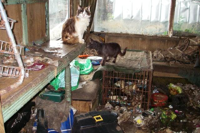 Inside the filthy caravan