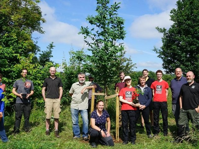 This tree planted at Carter Knowle Park marks the start of a £183,000 community planting project in Sheffield.