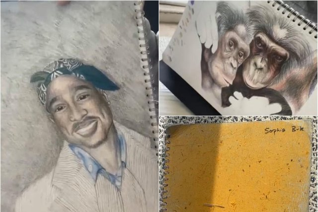 A talented Sheffield teenager has lost her GCSE art folder